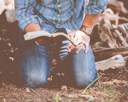 bibliolatry-worship-the-bible.jpg