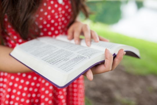 Confidence in the Bible