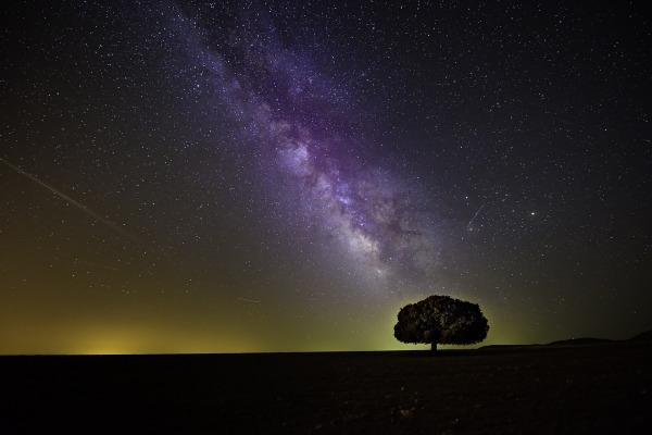 creator-cosmos-naturalism